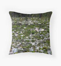 Everglades Throw Pillow