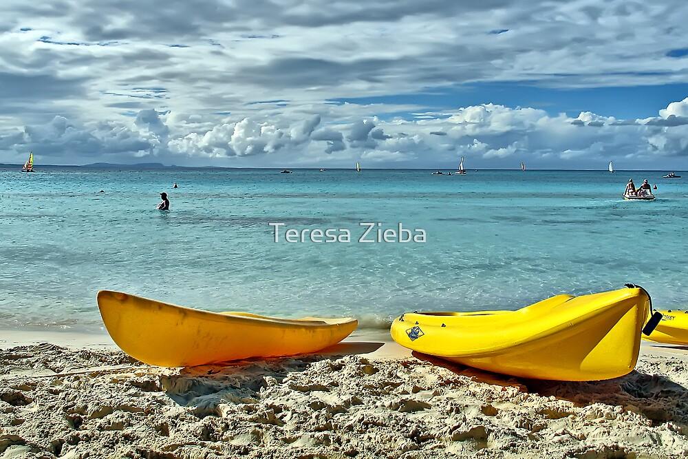 Yellow Kayaks by Teresa Zieba