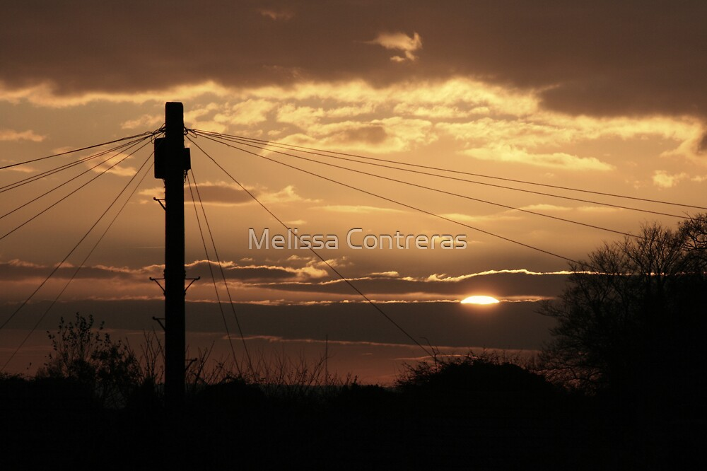 Sunset by Melissa Contreras