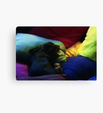 Link and Pillows Canvas Print