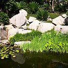 Chinese Gardens by Richard  Windeyer