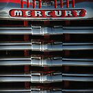 Mercury Grill by Roxane Bay