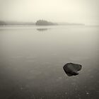 wade in the water by Bill vander Sluys