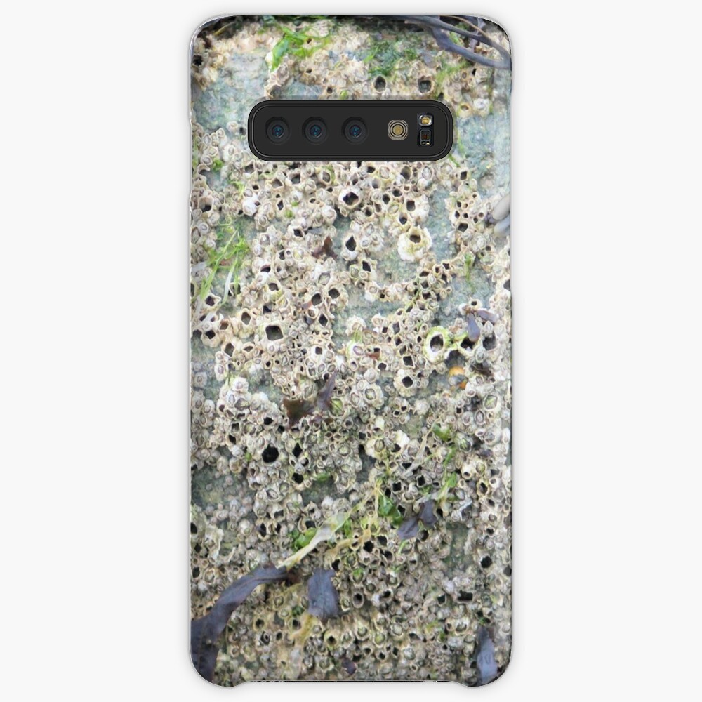 Barnacles Case & Skin for Samsung Galaxy
