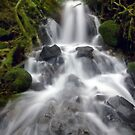 Lower Fairy Falls by failingjune
