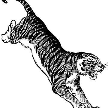 Jumping Tiger by FilmFactoryRayz