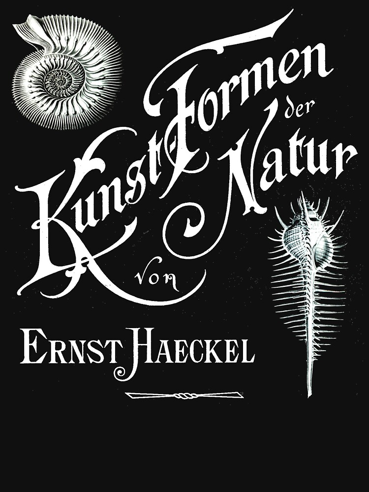 Ernst Haeckel Kunst Formen Der Natur  by mkkessel