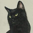 Black Cat by Kate Wilkey