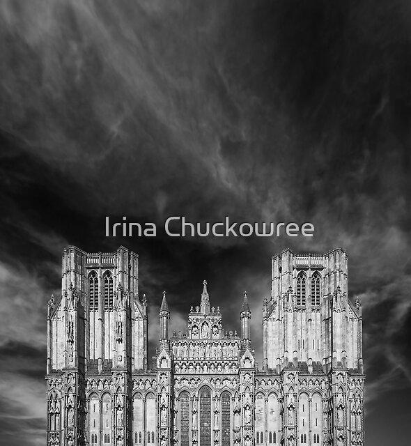 Wells Cathedral by Irina Chuckowree