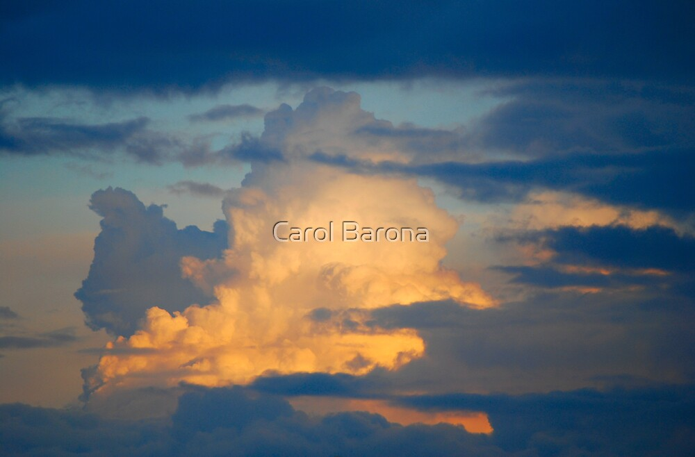 A Touch Of Yellow by Carol Barona