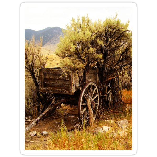 Wagon by Rune Monstad