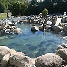 Maruia Hot Springs Resort, South Island, New Zealand by Sharon Brown