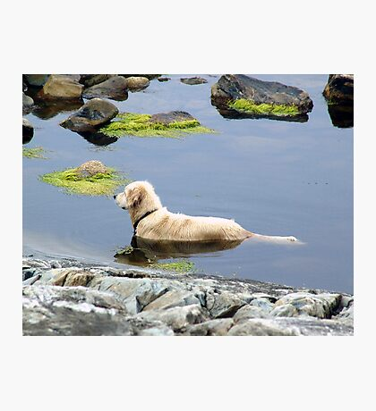 Saul in the Water Photographic Print
