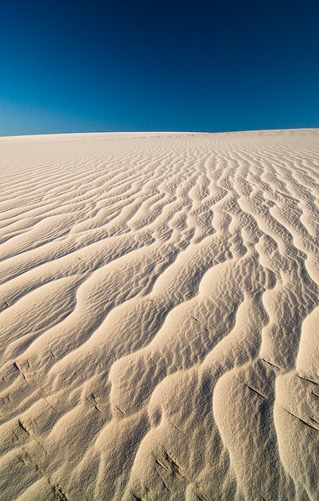 Lençois Maranhenses by WLphotography