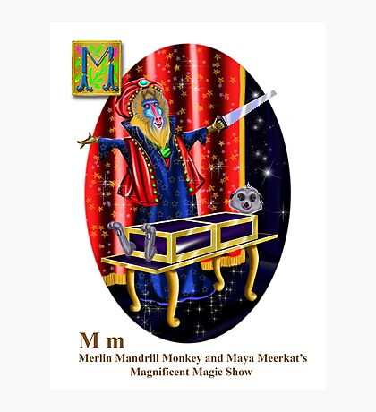 Merlin and Maya Photographic Print