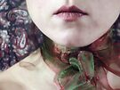 ~ christmas ribbon ~ by Adriana Glackin