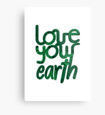 Love your Earth II Metal Print