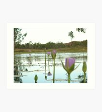 Wine glass on billabong Art Print