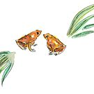 Let's frog about this! by yanak