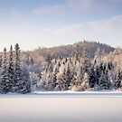 Winter in Quebec by Jola Martysz