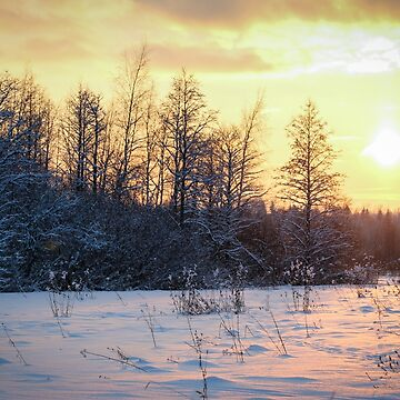Evening winter landscape. by GermanS
