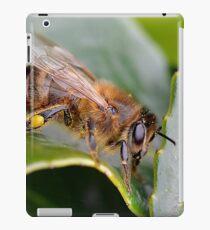 Macro Bee iPad Case/Skin