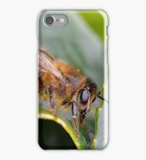 Macro Bee iPhone Case/Skin