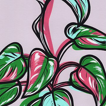 Philodendron Pink Princess by turddemon