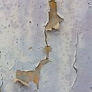 a wall showing its laughlines by alan shapiro