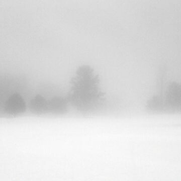 Bridgton Highlands - Trees In Fog and Snow by rural-guy