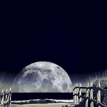 Blue Moon by Spottedlongneck