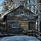 1700's Log School House in West Chester, Pennsylvania by Polly Peacock