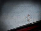 high voltage by Anthony Mancuso