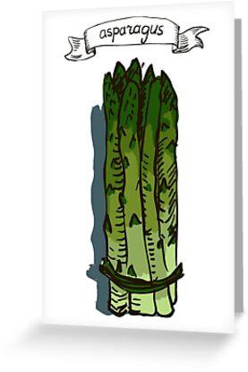 watercolor hand drawn vintage illustration of asparagus by OlgaBerlet