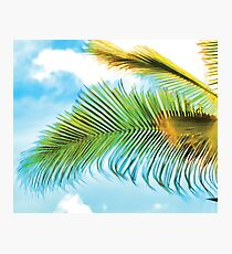 Detail of a palmtree leaves moved by the wind Photographic Print