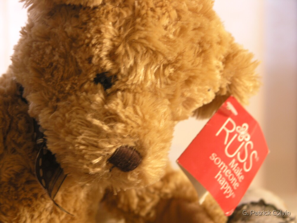 Teddy's Loney by Gregory Colvin