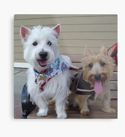 Westie and Cairn Metal Print