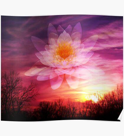 Rising Lotus Setting Sun Poster