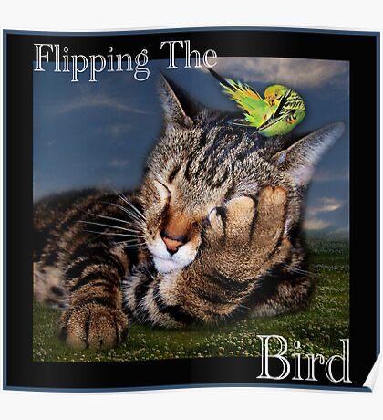 Flipping The Bird Poster
