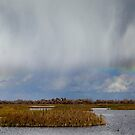 Rain Showers and Rainbow by Floyd Hopper