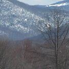 SNOW ON THE MOUNTAIN by Debra Willis
