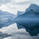 Face in the Ice by DianaC