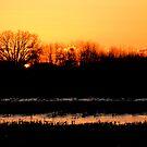 Lasting Winter Sunset by velveteagle