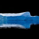 Blue Berg by DianaC