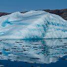Fresh Water Freeze by DianaC
