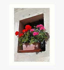 Tuscan Windowbox Art Print