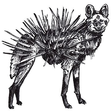 Echinocyon by cizauskas