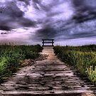 Purple Rain by Riggzy