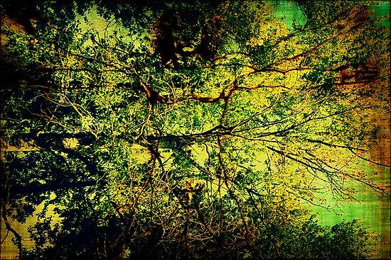 Vitruvian Man Tree by PeggySue67
