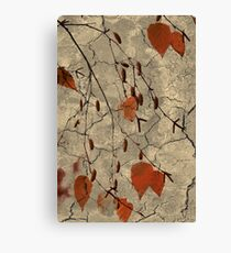 Gently Falling Canvas Print